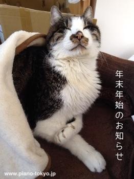 nenmatsu2012_13.jpg