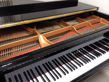 yamaha_piano_gc1-sn.jpg